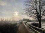 Lane in snow