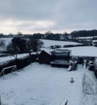 Snow in field